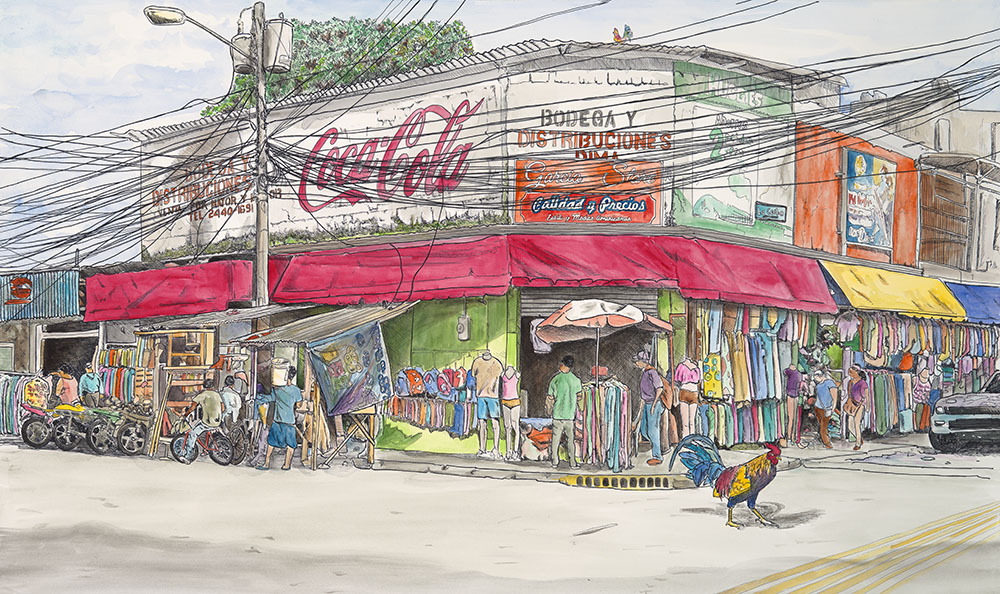 Why did the Chicken Cross the Road - Watercolor, La Ceiba, Honduras